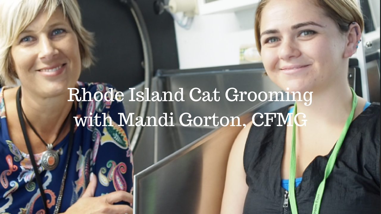 Rhode Island Cat Grooming Mobile Van with Mandi Gorton, CFMG