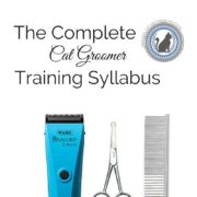 Complete Cat Groomer Training Syllabus