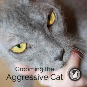 Grooming the Aggressive Cat online course