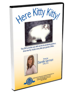 Here Kitty Kitty DVD