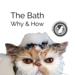 The Bath course icon