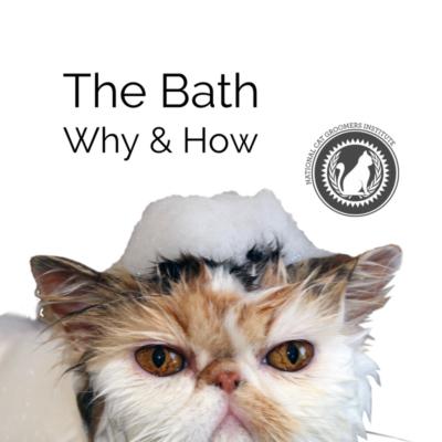 The Bath course icon