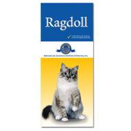 Ragdoll customer brochures