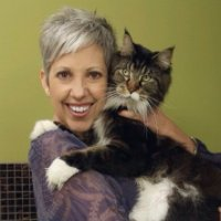 Cat Boarding & Grooming with NCGIA Certifier Connie Buchanan, CFMG