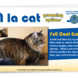 Cat Groom Styles Flipchart
