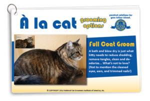 Cat Groom Styles Flipchart