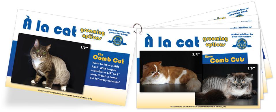 Cat Grooming Styles Flip Chart