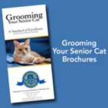 Senior cat customer brochures