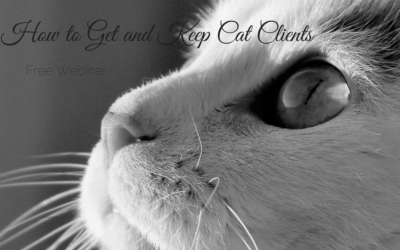 How to Get and Keep Cat Clients