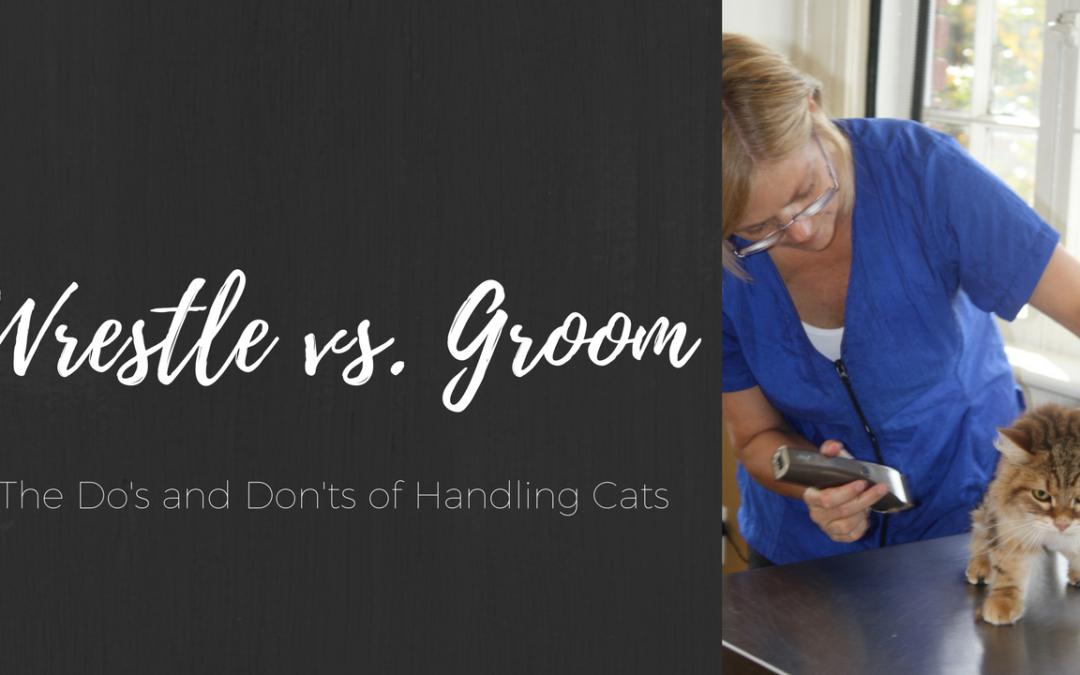 Wrestle vs. Groom