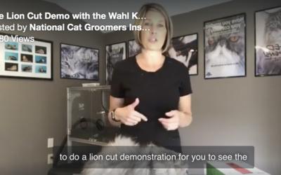 Watch Danelle's live lion cut demo!