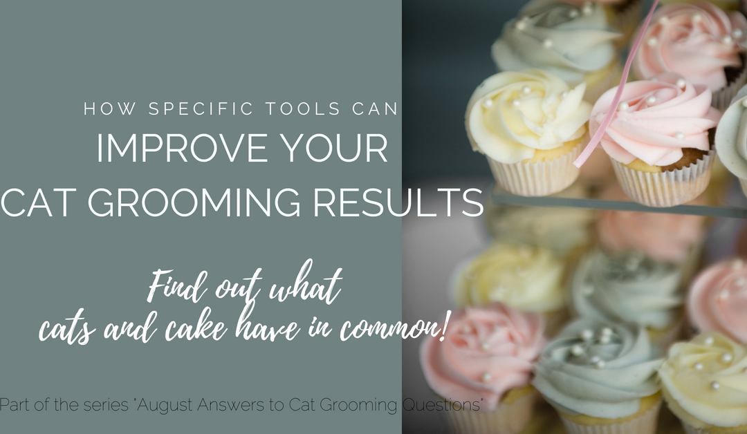 How Specific Tools Can Improve Your Cat Grooming Results