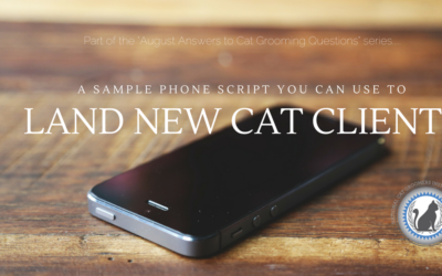 A Sample Phone Script You Can Use to Land New Cat Groom Clients