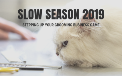 Stepping Up Your Game with the Slow Season Challenge