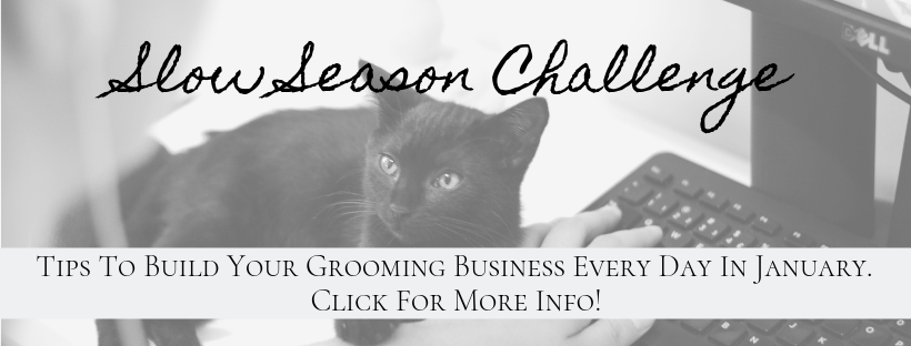 Join the Slow Season Challenge of January 2019