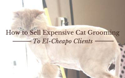 How to Sell Expensive Cat Grooming to El Cleapo Clients feat. Melissa Hall